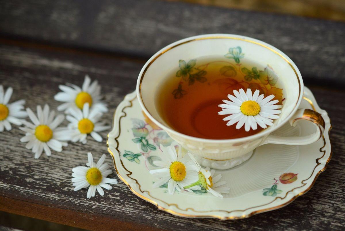 Mit viel Tee gut gegen eine Blasenentzündung gewappnet