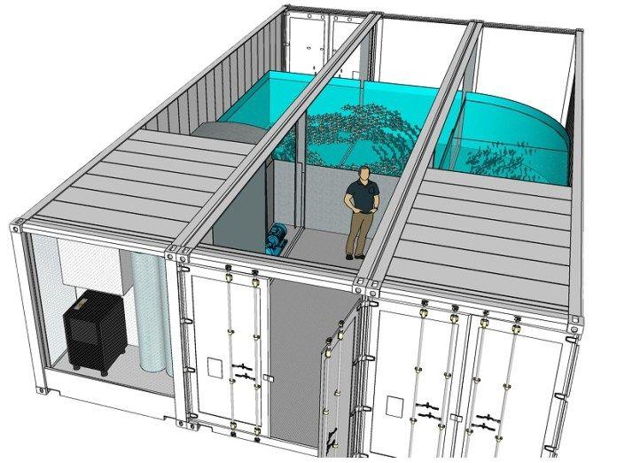 Fishmaker plant Salzwasserfischzucht in der Region