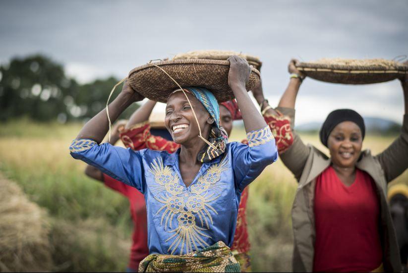 «Global Happiness» - DIGITALER Talk: Glück und Wohlbefinden in Peru und Tansania